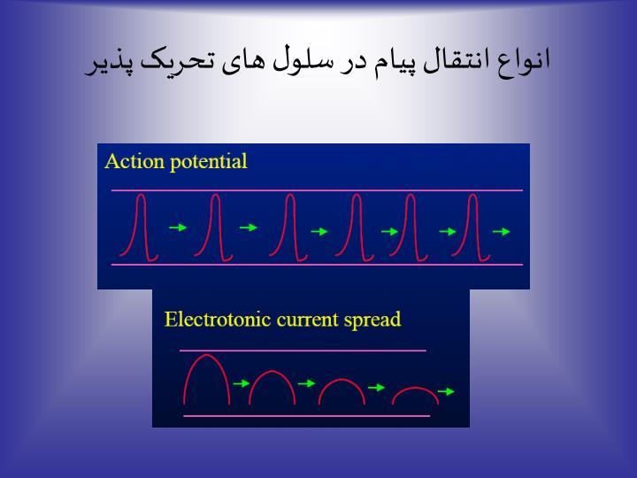 انواع انتقال پیام در سلول های تحریک پذیر