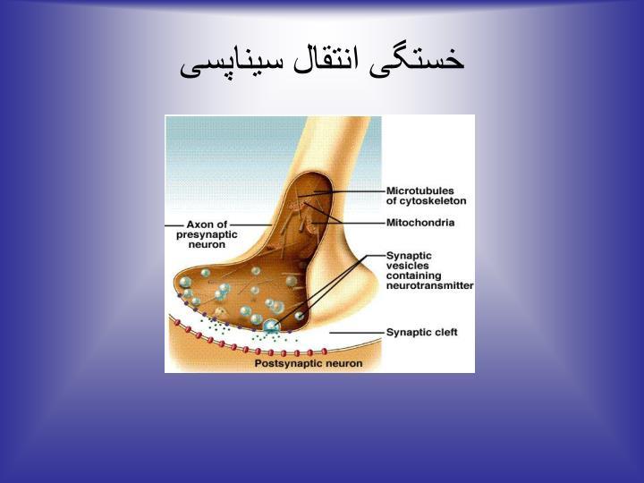 خستگی انتقال سیناپسی