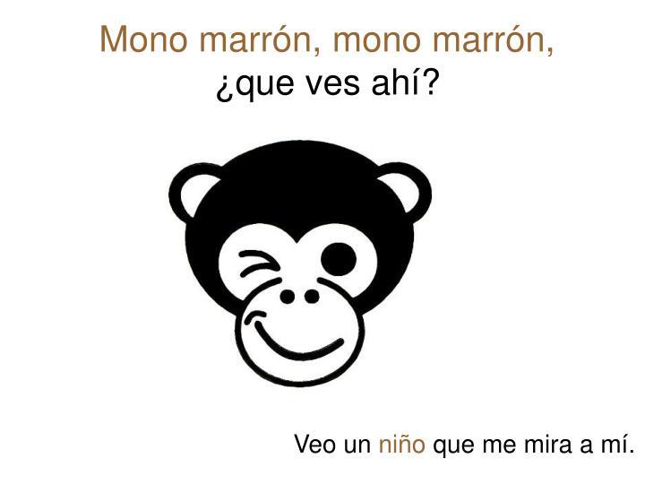 Mono marrón, mono marrón,