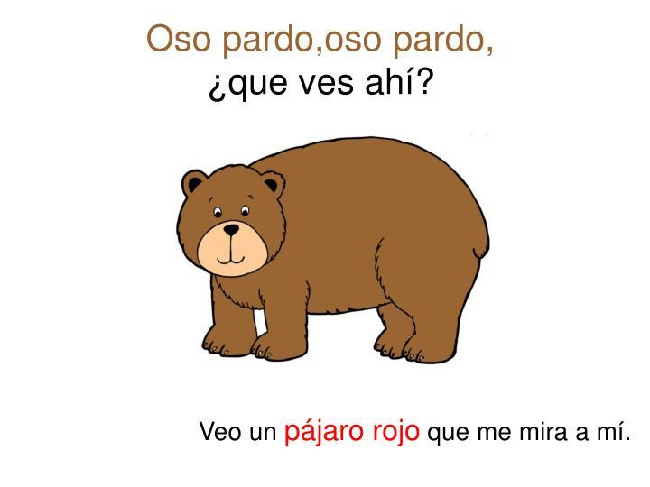 Oso pardo,oso pardo,