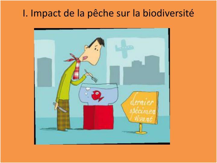 I. Impact de la pêche sur la biodiversité
