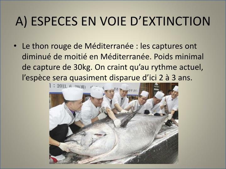 A) ESPECES EN VOIE D'EXTINCTION