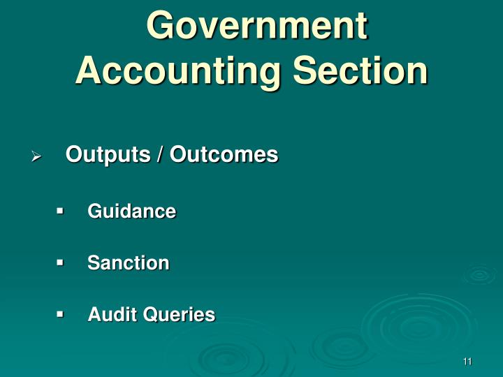 Government Accounting Section