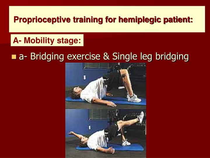 Proprioceptive training for hemiplegic patient:
