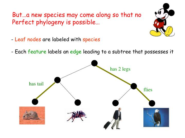 But…a new species may come along so that no