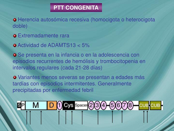 PTT CONGENITA