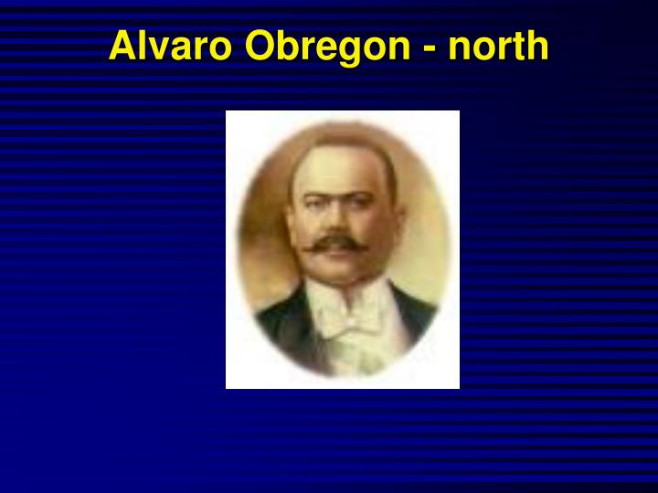 Alvaro Obregon - north