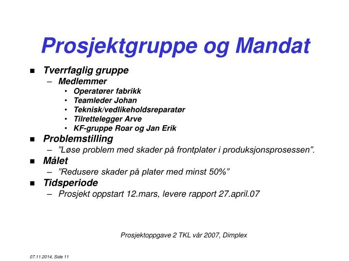Prosjektgruppe og Mandat