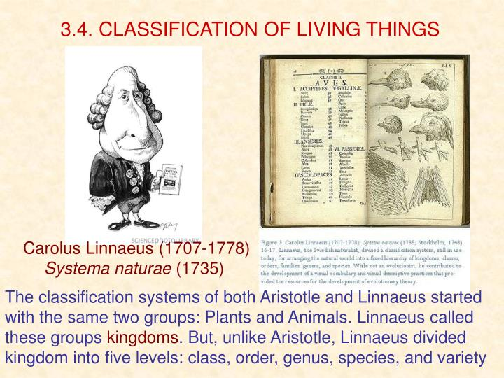 3.4. CLASSIFICATION OF LIVING THINGS