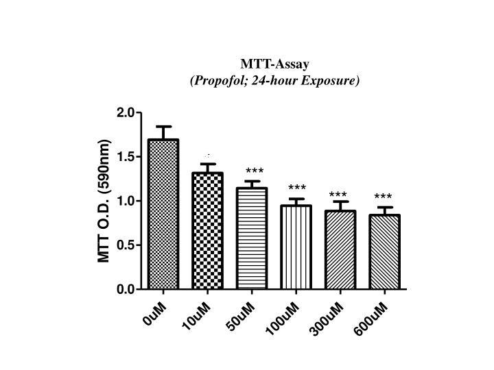 MTT-Assay