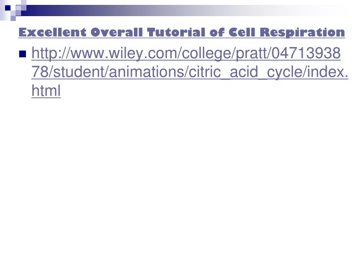 Excellent Overall Tutorial of Cell Respiration