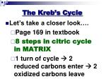 the kreb s cycle1