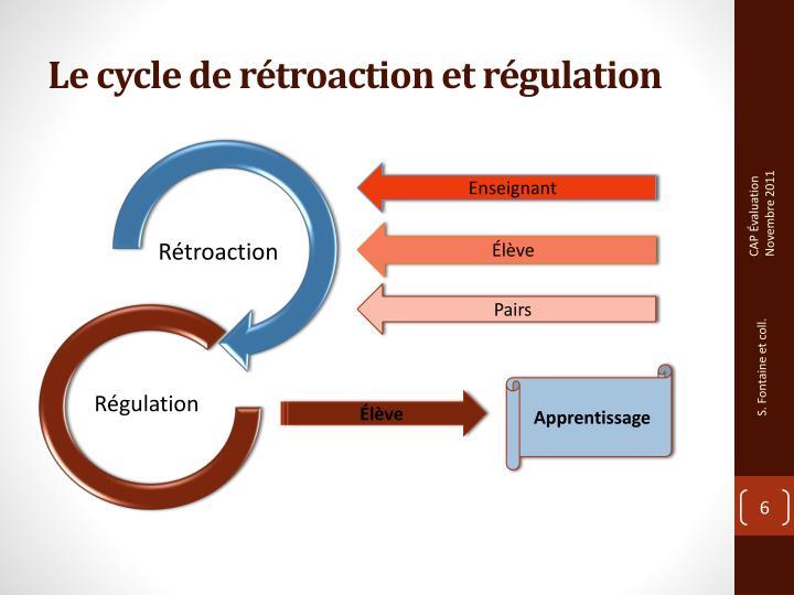 Le cycle de rétroaction et régulation
