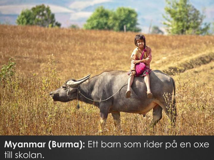 Myanmar (Burma):