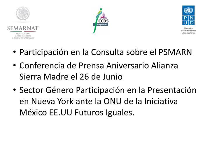 Participación en la Consulta sobre el PSMARN