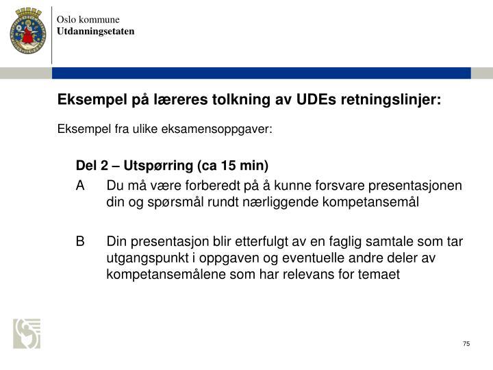 Eksempel p lreres tolkning av UDEs retningslinjer: