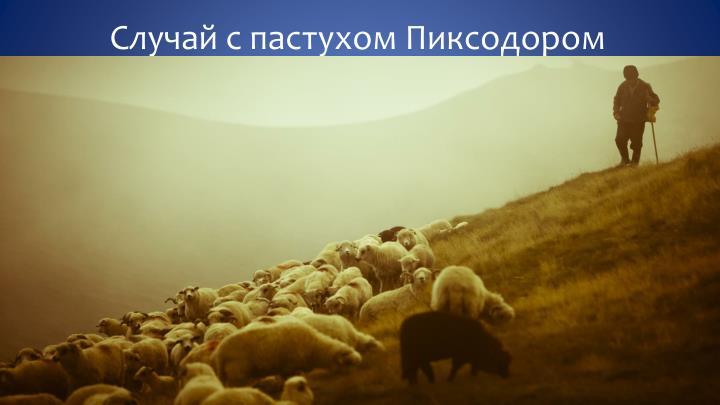 Случай с пастухом