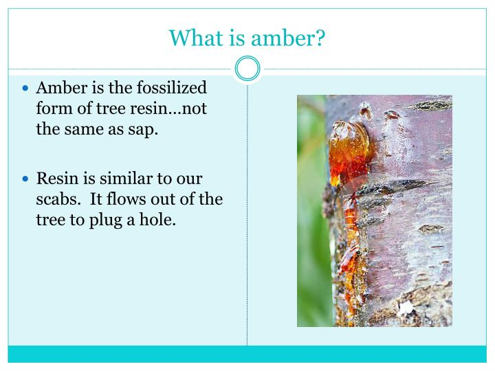 What is amber?