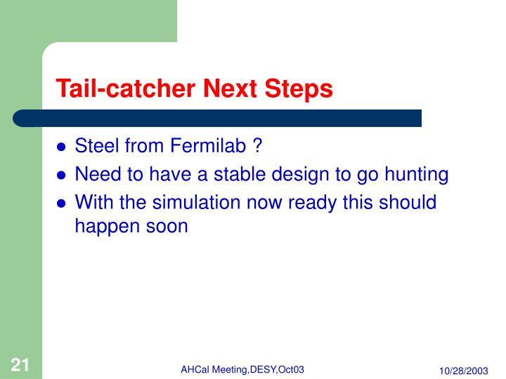 Tail-catcher Next Steps