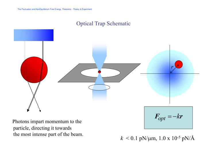 Optical Trap Schematic