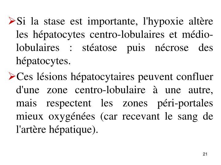 Si la stase est importante, l'hypoxie altre les hpatocytes centro-lobulaires et mdio-lobulaires : statose puis ncrose des hpatocytes.