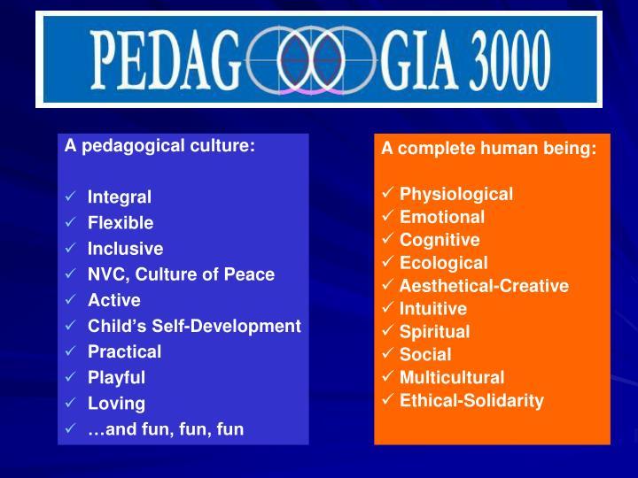 A pedagogical culture: