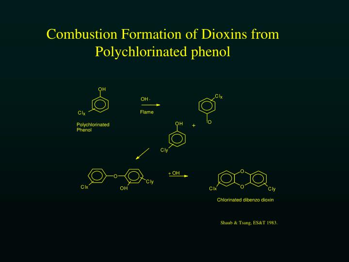 Combustion Formation of Dioxins from Polychlorinated phenol
