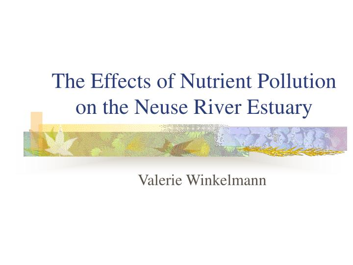 The effects of nutrient pollution on the neuse river estuary