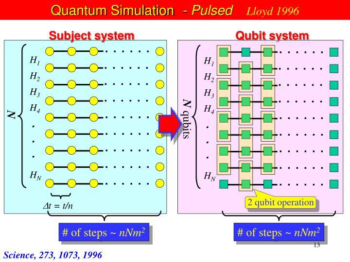 Quantum Simulation