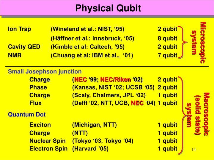 Physical Qubit