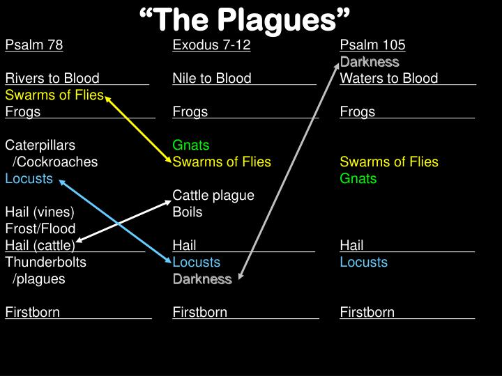 """The Plagues"""