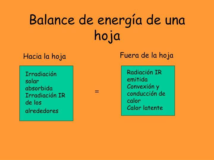 Balance de energía de una hoja