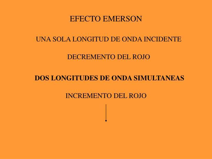 EFECTO EMERSON