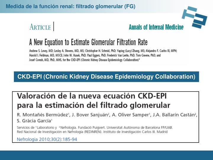 Medida de la función renal: filtrado glomerular (FG)