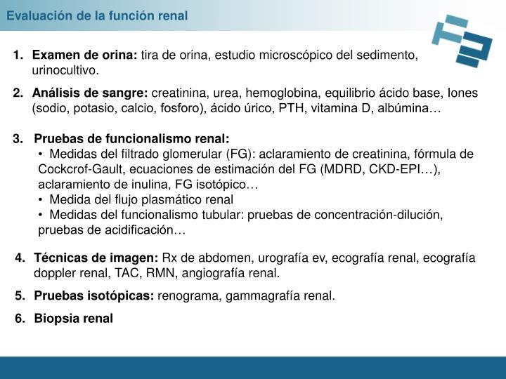 Evaluación de la función renal