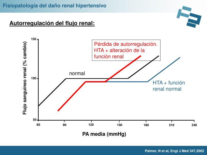 Fisiopatología del daño renal hipertensivo