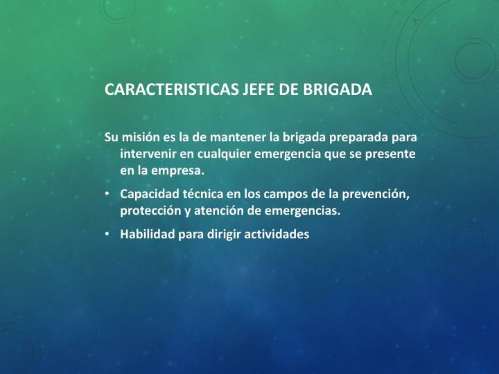 CARACTERISTICAS JEFE DE BRIGADA