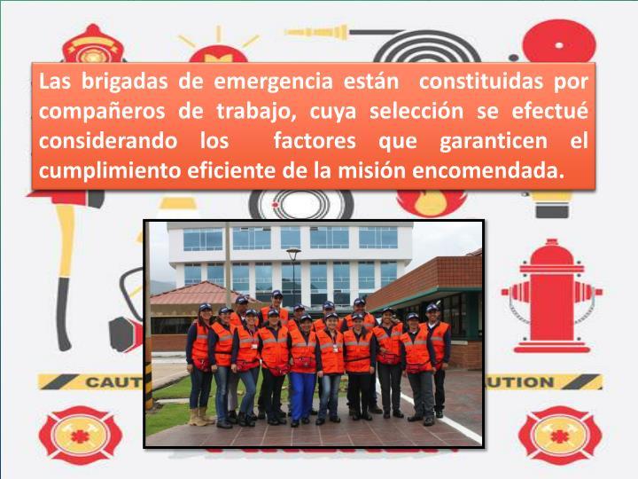 Las brigadas de emergencia están  constituidas por compañeros de trabajo, cuya selección se efectué considerando los  factores que garanticen el cumplimiento eficiente de la misión encomendada.