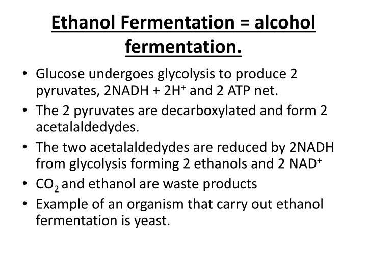 Ethanol Fermentation = alcohol fermentation.