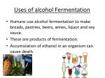 uses of alcohol fermentation