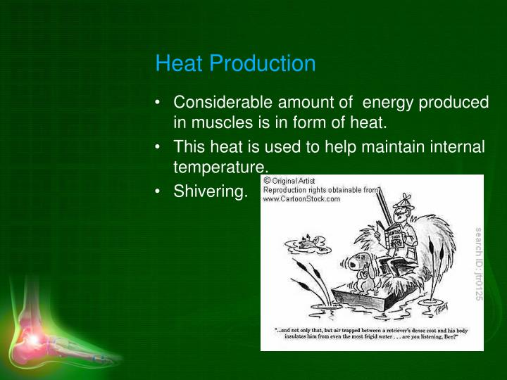 Heat Production