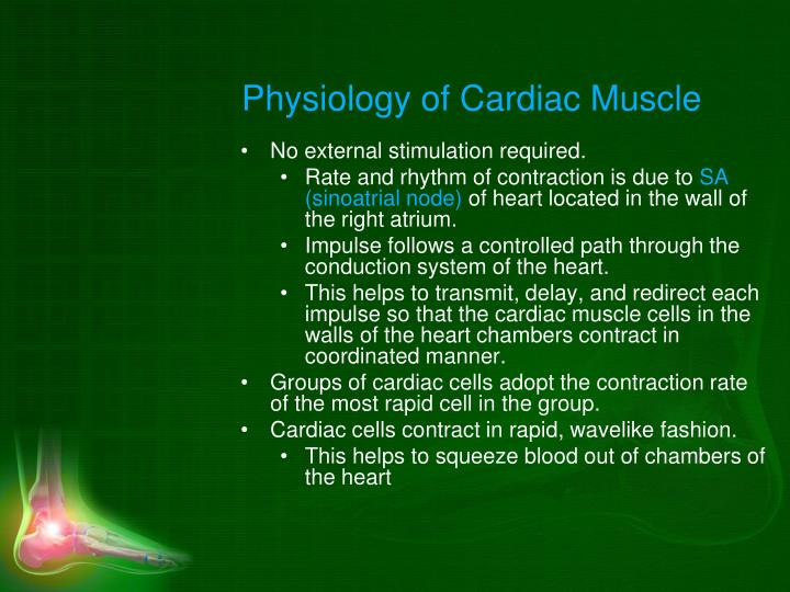Physiology of Cardiac Muscle