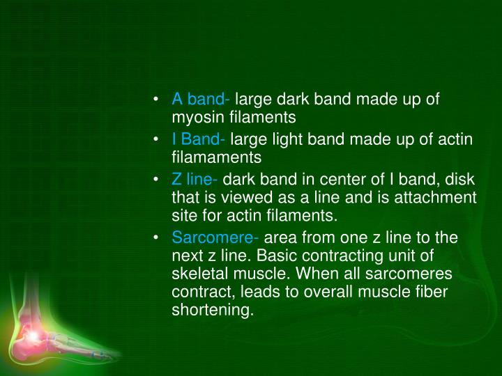 A band-