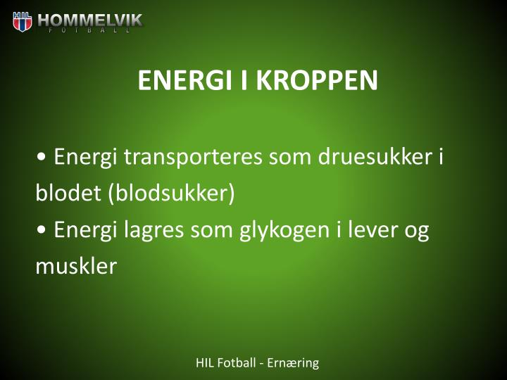 ENERGI I KROPPEN