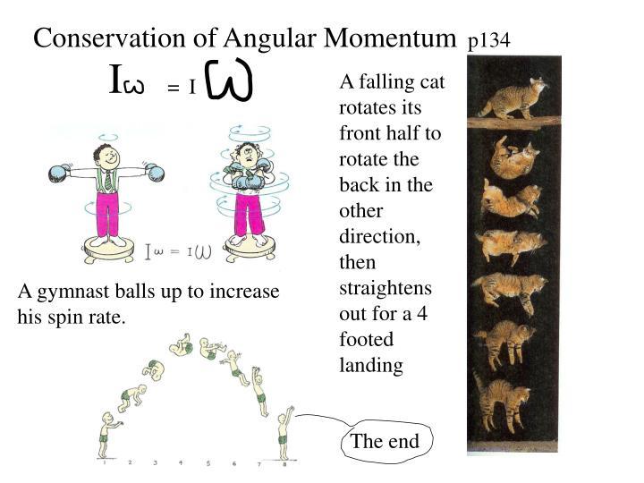 Conservation of Angular Momentum