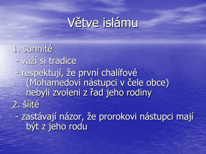Větve islámu