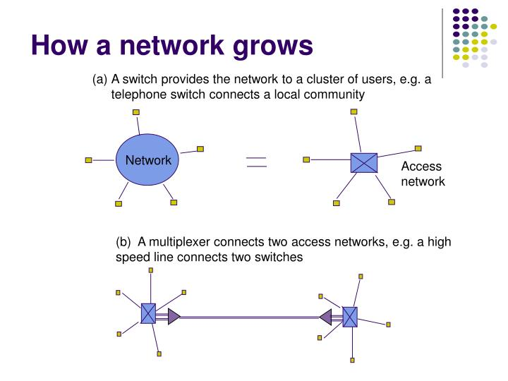 How a network grows