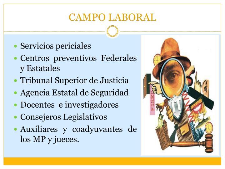 CAMPO LABORAL