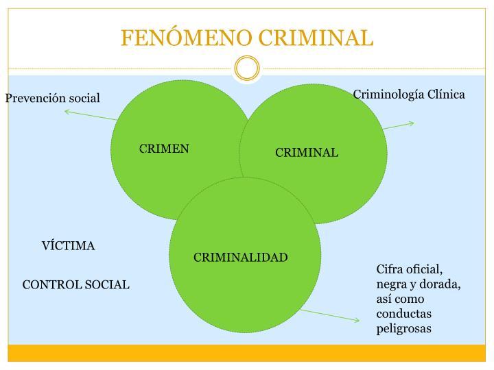 FENÓMENO CRIMINAL