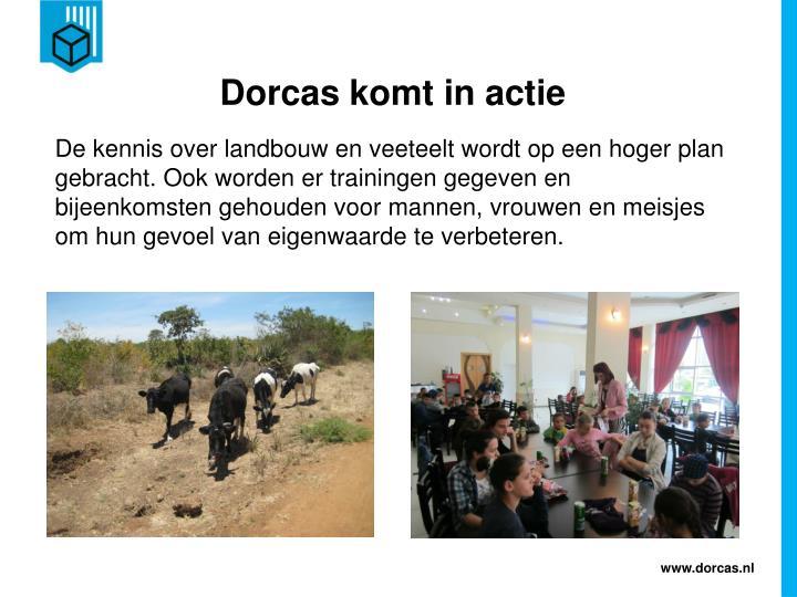 Dorcas komt in actie